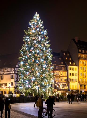 Grand Sapin - Noël à Strasbourg