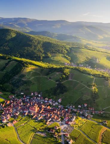 Vue sur Niedermorschwihr- Route des Vins d'Alsace